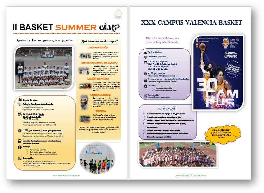 resumen basket camp web